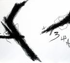 peinture-n-47-acrylique-et-huile-sur-toile-200x134-7-2010