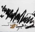 Sans Titre - Fusain Et Huile sur Papier 49 - 24x32 - 04-2011.jpg