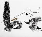 Sans Titre - Fusain Et Huile sur Papier 50 - 24x32 - 04-2011.jpg