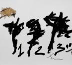 Sans Titre -  Huile et Crayon Sur Papier 67 - 50x65 - 5-2011.jpg